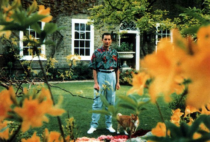 Freddie Mercury-t a kertjében kapták le utoljára, 1991 nyarán. Már itt is látszottak rajta a betegség jelei, azonban még nem épült le teljesen.