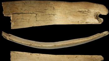 Nagyfejű ember hordhatta az 50 ezer éves tiarát