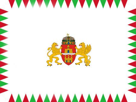 hivatalos-bp-zászló
