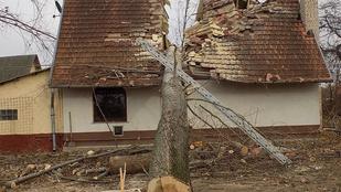 Kettévágott egy kidőlt fa egy családi házat Üllőn