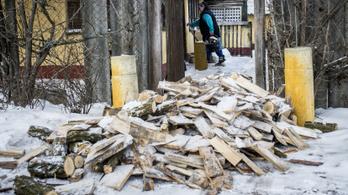 Több százezer háztartás maradt le az államilag támogatott tűzifáról