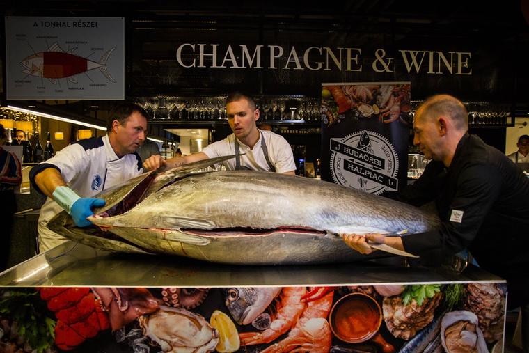 Az itt feldolgozásra kerülő hal súlya körülbelül 180 kilogramm, nem véletlen, hogy a bontás elején még 3 ember kell a biztonságos mozgatáshoz