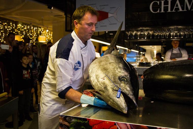 Ez a példány Spanyolországból, egy Barcelonától mintegy 100 kilométerre fekvő tonhalrancsról érkezett