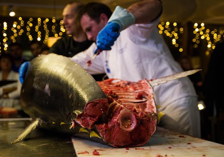 Precíz feldolgozás mellett körülbelül másfél millió forint értékű hús nyerhető ki belőle, így kulcsfontosságú, hogy szakértő kezek végezzék a munkát