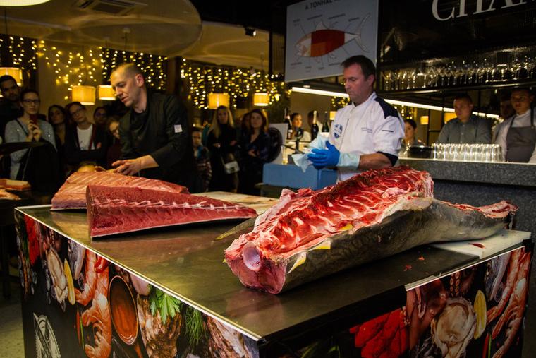 A tonhal húsa az állat testének egyes részein teljesen más textúrájú, más-más zsírtartalommal rendelkezik