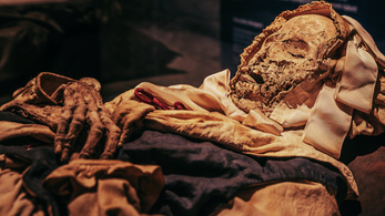 The mistery of the heartless Hungarian mummy