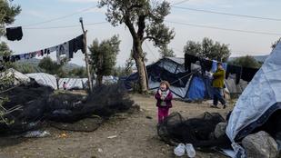 Elfogadta a humanitárius vízum javaslatát az Európai Parlament