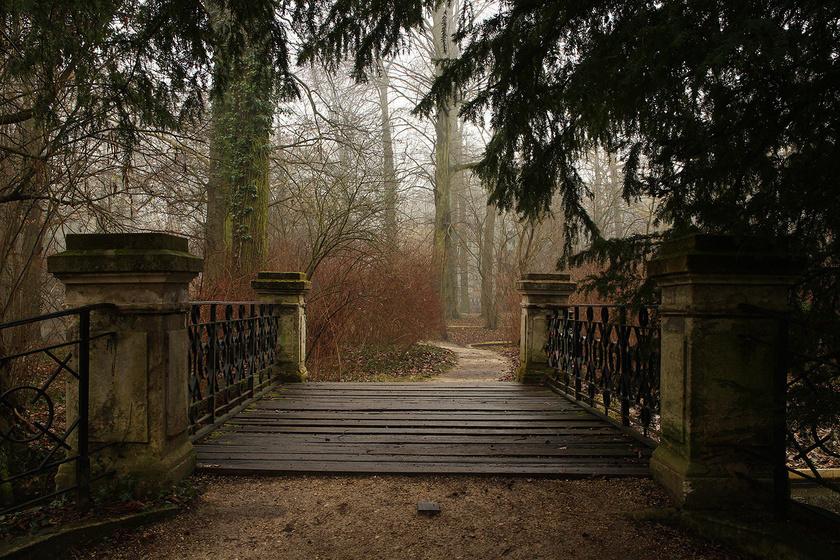 Az Alcsúti Arborétum télen-nyáron gyönyörű helyszíne a sétáknak, hídjai a Váli-víz és a Boglári-vízfolyás fölött a meseszép természetvilágba vezetnek. Télen csütörtöktől vasárnapig látogatható.