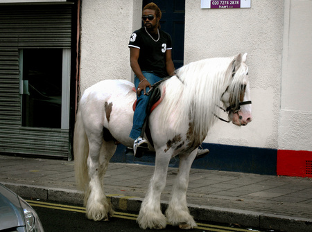 7 prince-on-a-white-horse-london-02