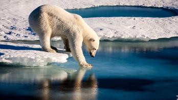 Rekordsebességgel melegszik az Északi-sarkvidék, ami nálunk is szélsőséges időjárást okoz