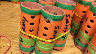 Hajcsavarókban csempészett hetven élő pintyet, hogy énekesversenyen indítsa őket