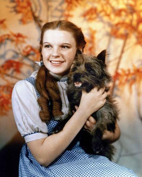 Judy Garland Dorothy szerepében.