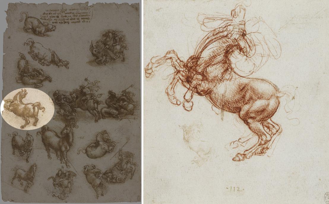 Leonardo rajzai, a bal oldali vázlatok között megjelöltük azt az ágaskodó lovat, ami legjobban hasonlít a budapesti Lovasra; jobbra egy másik rajz arról tanúskodik, hogy a mestert mennyire foglalkoztatta a mozgás ábrázolásának problémája.