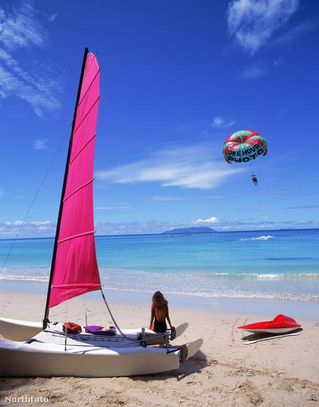 Tengerpart-részlet a Seychelle-szigeteken
