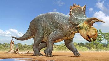 Új dinófajt fedeztek fel Amerikában