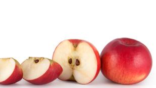Mérgező-e az almamag?