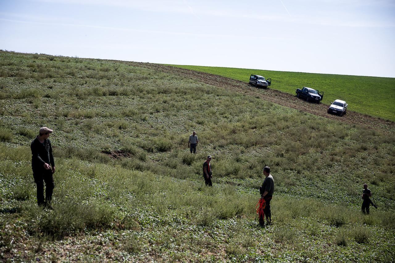 Sok vadásztársaság vadföldet - egy legelő jellegű rétet - is tart a szarvasok, őzek miatt, mely nem csak élelmet, de búvóhelyet is biztosít a jószágoknak.