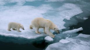 Nem a mostani az első globális felmelegedés a Földön, korábban is volt már ilyen