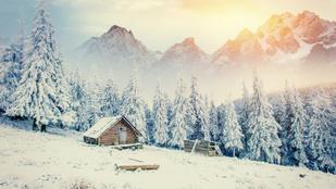 40 éve él egyedül az erdőben: mindent tud a hóesésről