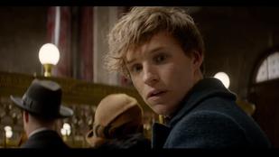 Harry Potterrel indítjuk az Ünnepi Kvízhetet a Velveten