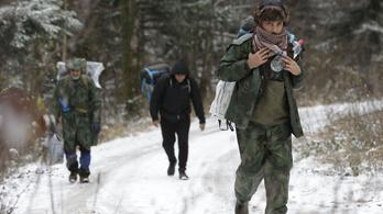 A horvát kormány több EU-n kívüli bevándorlót akar
