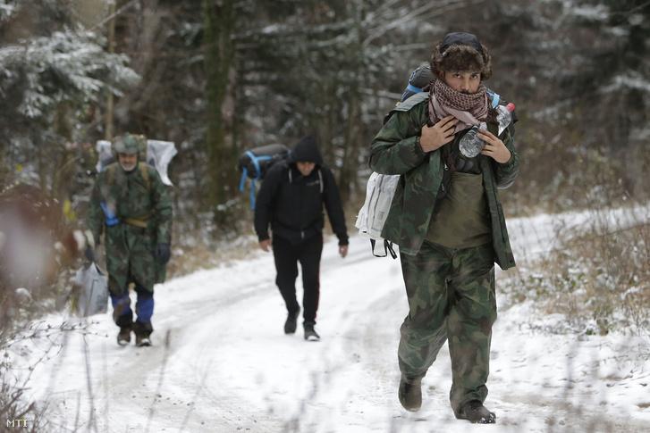 Illegális bevándorlók a horvát határ felé gyalogolnak egy erdei úton a Pljesevica hegyen a boszniai Bihács közelében 2018. november 28-án.