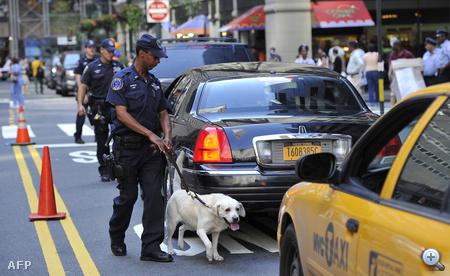 Kutyás rendőrökkel is ellenőriznek