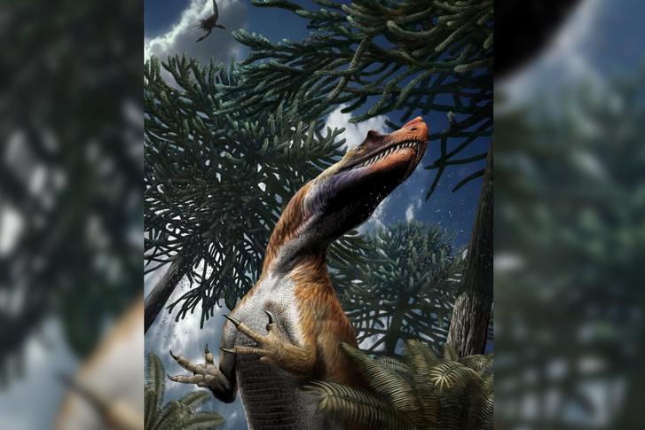 Így nézhetett ki az alpesi ceratosaurus