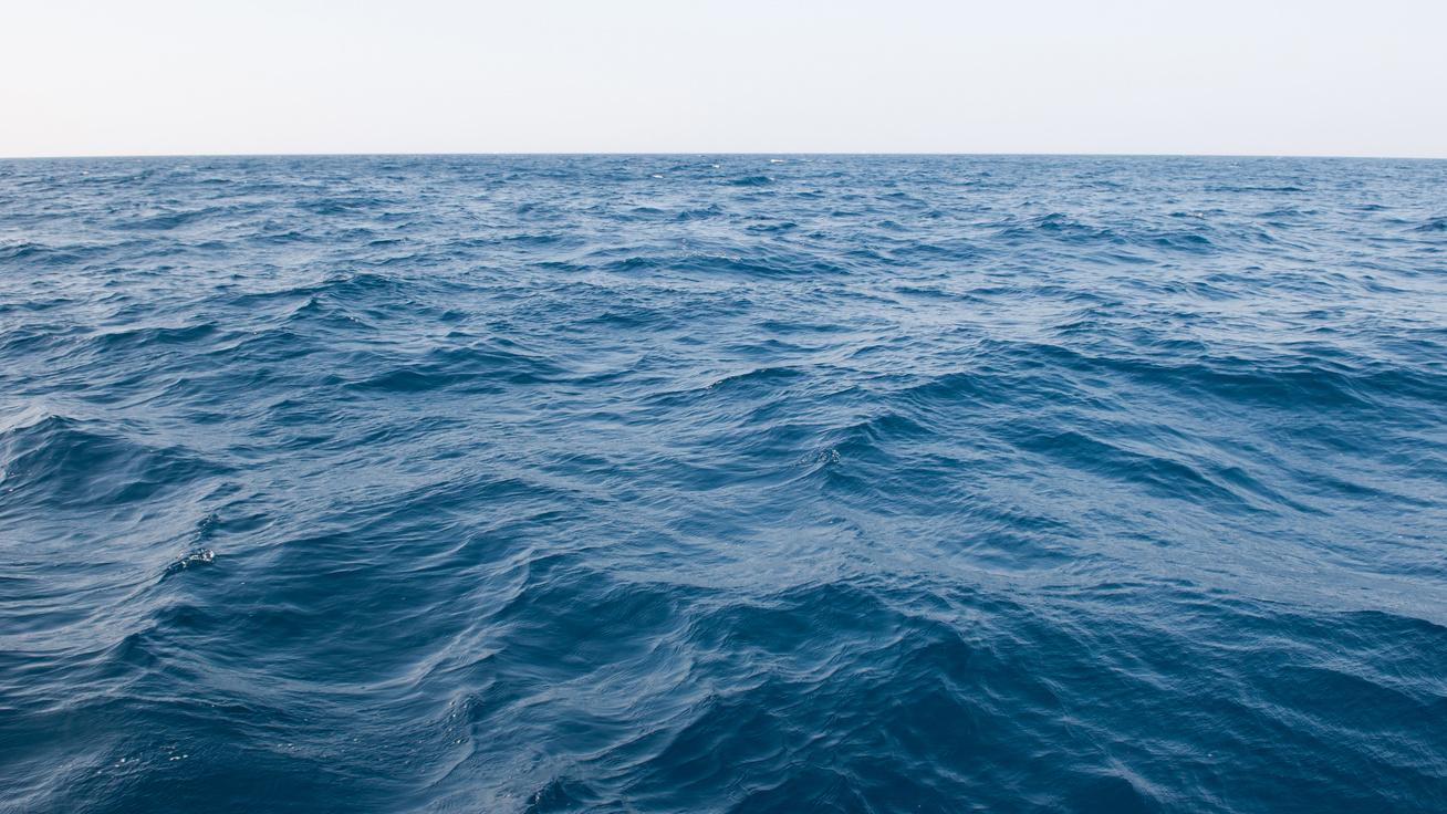 A merülés pillanatában kattintott a fotós: meghökkentő fotók a víz alól
