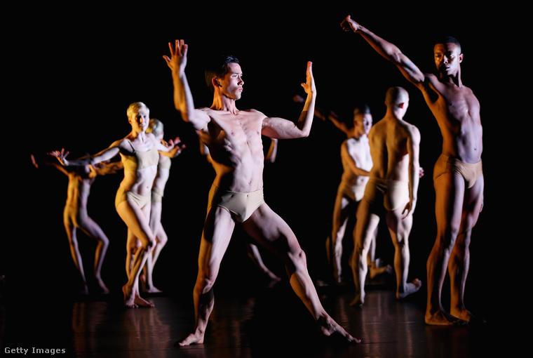Sydney-ben egy moderntánc-előadás premierje volt január 5-én, az volt a címe, hogy Tree of Codes, és tartalmazott egy ilyen jelenetet.