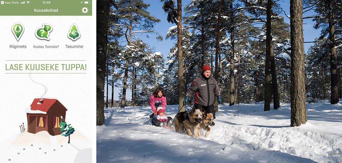 A fakivágó app és egy észt család a téli tallinni erdőben.
