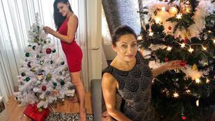 Nézze meg Liptai Claudia és más celebek karácsonyfáit!