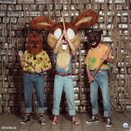 A kép egyértelmű üzenete: a hawaii ing állat.