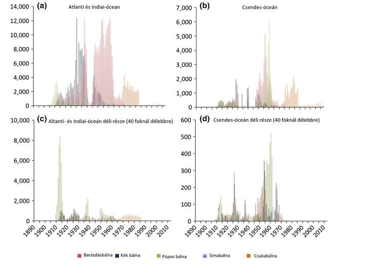 Történelmi bálnafogás-adatok (a Szovjetunió nélkül). Forrás: Tulloch et al. 2017.
