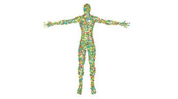 Az emberben több a baktérium, mint önmaga