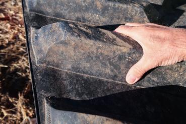 Vaskos profilbütykök kapaszkodnak meg a talajba süllyedve