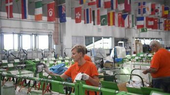 A kínai áruk legnagyobb kiszolgálója akar lenni a Magyar Posta