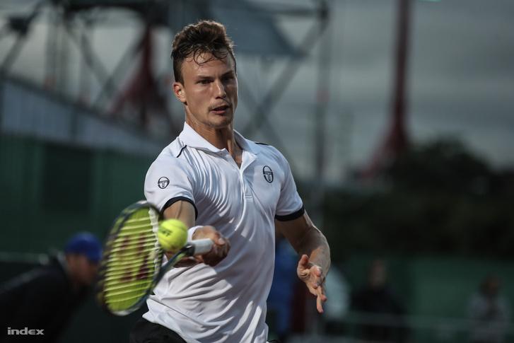 Fucsovics a 2017 szeptemberi Davis-kupa egyik meccsén, Budapesten