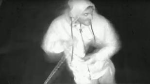 Besurranó tolvajokat keresnek Budapesten