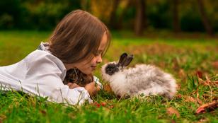 Vegyél háziállatot a gyereknek! 10 okod biztosan van rá