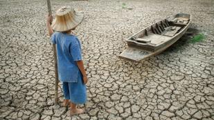 Fél fok az élet: Mennyit számít egy jelentéktelennek tűnő felmelegedés?