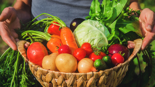 Védd a földet, ne egyél biozöldséget!
