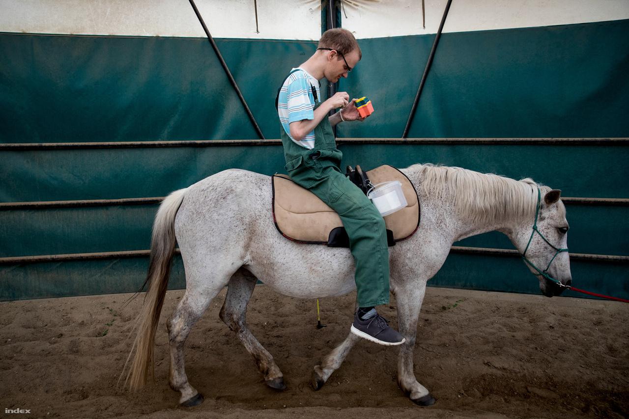 """Sanya lovas foglalkozáson merül el a játékában.Van, aki jobban, van, aki látszólag kevésbé reagál, de az állatokkal való terápia több okból is hasznos: egyrészt a kapcsolatteremtést segíti, másrészt a koncentrációt növeli, harmadrészt a nagy és finommotoros mozgások, az egyensúlyérzék fejleszthető vele. De az autizmusnál még egy célja van a heti rendszerességgel vitt foglalkozásnak: az idő strukturálását segíti. Van, akinek hosszabb időbe telik, míg elfogadja a lovat: nem akar hozzáérni, vagy fél ráülni. Van, aki szívesen csutakolja a lovat, szereti simogatni, de fél ráülni. Fokozatosan rávezethető, de ha nem, úgy a kapcsolatteremtés miatt önmagában is hasznos a terápia.Nincs csodapirulaAz otthon lakói különbözők abban is, hogy van-e szükségük gyógyszerre. Önmagában az autizmusra nincs gyógyszer, csak az esetleg mellé felzárkózó pszichiátriai kórképre, pánikbetegségre, depresszióra, epilepsziára. Jellemző az alvászavar is. Nem mindenkinél van pszichiátriai kórkép, de idővel megjelenhet, ahogy felhalmozódik a stressz. Ez a nem autistáknál is így van. """"A gyógyszerek használatának eldöntésekor az autista személy komfortérzetének a javítása a cél. Mindig is ez volt, a gyerekemnél is. Sosem az volt az elvárás, hogy attól »meggyógyul« - mindehhez az autizmusban járatos pszichiáterre van szükség, akik alig fellelhetőek az országban – mondja Schenk Erika."""