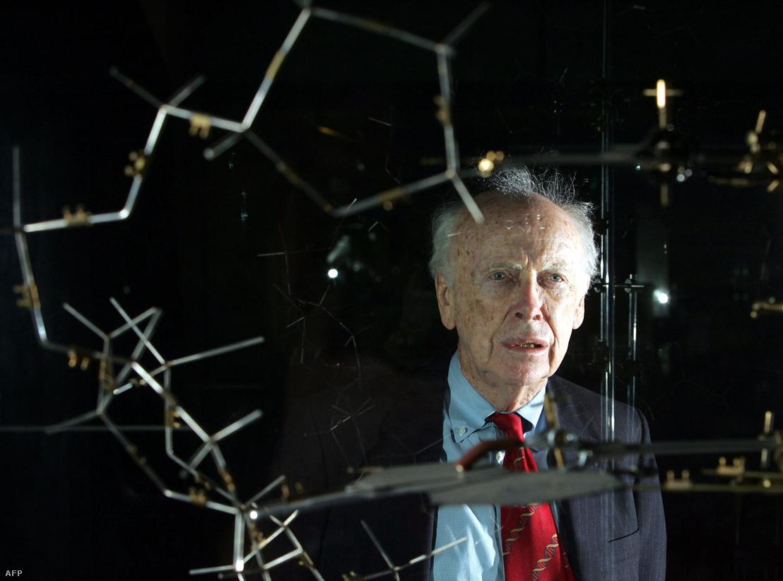 Dr. James Watson, az eredeti DNS modellel egy sajtótájékoztatón a londoni Tudományos Múzeumban 2005. május 20-án