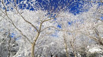 Hó, hó és hó is lesz a hétvégén
