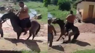 Ez történik, ha egy túlságosan súlyos személy ül fel egy lóra