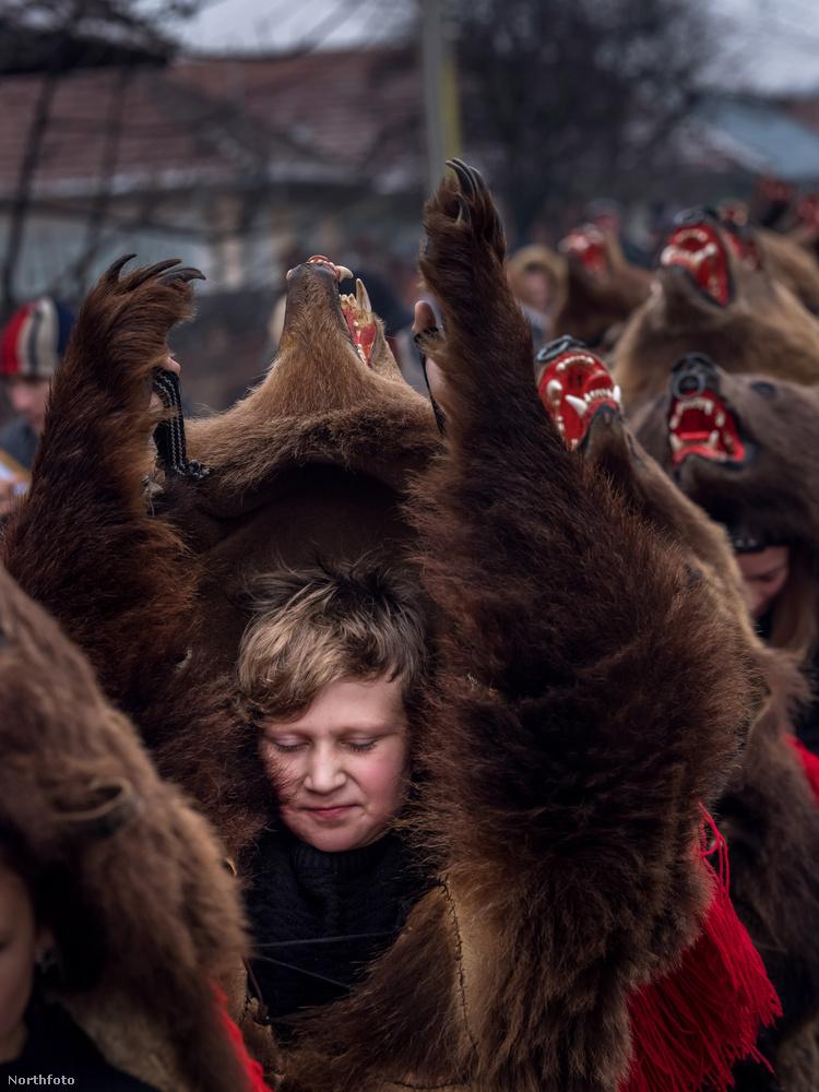 Egyébként ha ön rendszeresen olvassa a Velvetet, akkor jól tudja, hogy nemcsak emberek szeretnek medvének beöltözni, hanem kutyák is