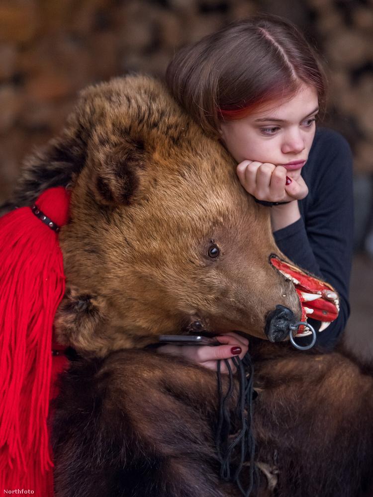 Az esemény román neve Ursul, minthogy a medve románul urs.