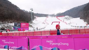 Erdő foglalhatja vissza az olimpiai sípályát