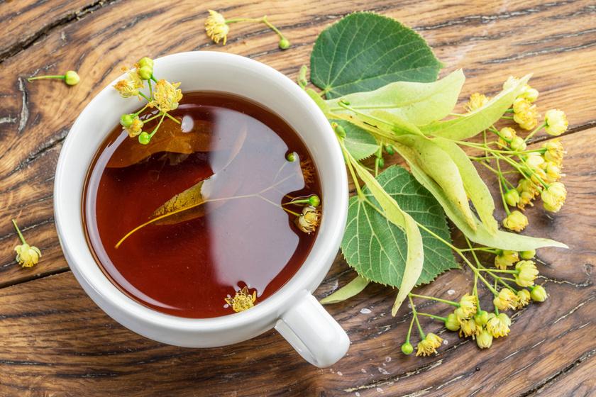 A legerősebb gyógynövények influenza ellen - Így használd őket, amikor támad a betegség